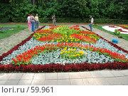 Купить «Клумба», фото № 59961, снято 5 июля 2007 г. (c) Дмитрий Карасев / Фотобанк Лори