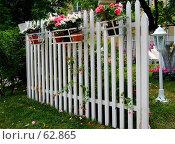 """Купить «Белый забор с цветами. """"Неделя садов"""".», фото № 62865, снято 17 июля 2007 г. (c) Тим Казаков / Фотобанк Лори"""