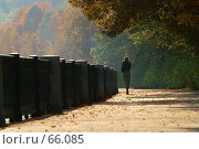 Купить «Autumn walk», фото № 66085, снято 3 октября 2005 г. (c) Морозова Татьяна / Фотобанк Лори