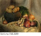 Купить «Сельский овощной натюрморт», фото № 66689, снято 20 сентября 2018 г. (c) Светлана Кучинская / Фотобанк Лори