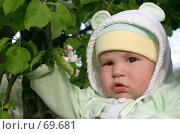Купить «Малыш», фото № 69681, снято 23 сентября 2018 г. (c) Юлия Кузнецова / Фотобанк Лори