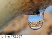 Капля. Стоковое фото, фотограф Александр Вальваков / Фотобанк Лори