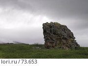 Купить «Пейзаж с камнем», фото № 73653, снято 30 июля 2007 г. (c) Роман Коротаев / Фотобанк Лори