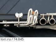 Купить «Инструмент», фото № 74845, снято 19 августа 2007 г. (c) Alla Andersen / Фотобанк Лори