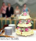 Купить «Свадебный торт», фото № 76045, снято 30 июня 2007 г. (c) Татьяна Макотра / Фотобанк Лори