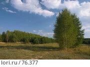 Купить «Пейзаж», фото № 76377, снято 19 апреля 2018 г. (c) Юрий Егоров / Фотобанк Лори