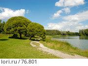Купить «Пейзаж с двумя ивами на берегу пруда», фото № 76801, снято 23 июля 2007 г. (c) Моисеева Галина / Фотобанк Лори