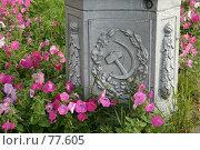Купить «Цветы на фоне столба в советской тематике», фото № 77605, снято 26 августа 2007 г. (c) Николай Гернет / Фотобанк Лори