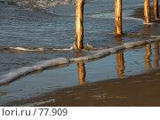 Купить «Пляж», фото № 77909, снято 3 января 2007 г. (c) Морозова Татьяна / Фотобанк Лори