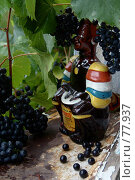 Купить «Виноградная лоза», фото № 77937, снято 2 сентября 2006 г. (c) Alla Andersen / Фотобанк Лори