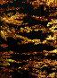 Золотые листья, фото № 78101, снято 27 октября 2006 г. (c) Alla Andersen / Фотобанк Лори