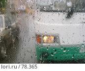 Купить «Дождь», фото № 78365, снято 8 сентября 2006 г. (c) Моисеева Галина / Фотобанк Лори