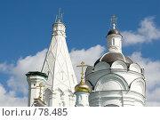 Купить «Коломенский собор», фото № 78485, снято 2 сентября 2007 г. (c) Алексей Судариков / Фотобанк Лори