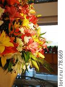 Купить «Цветочная композиция», фото № 78669, снято 22 августа 2007 г. (c) Лифанцева Елена / Фотобанк Лори