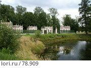 Купить «Фрагмент парка», эксклюзивное фото № 78909, снято 31 августа 2007 г. (c) Natalia Nemtseva / Фотобанк Лори