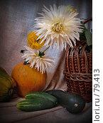 Купить «Осенние лучи», фото № 79413, снято 4 сентября 2007 г. (c) Таня Нотта / Фотобанк Лори
