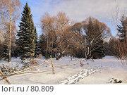 Купить «Про самый короткий день в году», фото № 80809, снято 25 декабря 2006 г. (c) Николай Федорин / Фотобанк Лори