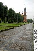 Купить «Вид на музейный комплекс», фото № 83265, снято 3 сентября 2007 г. (c) Parmenov Pavel / Фотобанк Лори