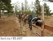 Купить «Седла», фото № 85697, снято 8 сентября 2007 г. (c) Виталий Емельянов / Фотобанк Лори