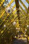 Вниз в новую желтую эру, фото № 85809, снято 23 августа 2007 г. (c) Argument / Фотобанк Лори