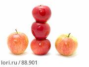 Купить «Сорт яблок», фото № 88901, снято 26 мая 2018 г. (c) Угоренков Александр / Фотобанк Лори