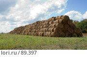 Купить «Скатанное сено», фото № 89397, снято 19 сентября 2018 г. (c) SummeRain / Фотобанк Лори