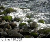 Купить «Берег», эксклюзивное фото № 90769, снято 3 августа 2007 г. (c) Михаил Карташов / Фотобанк Лори