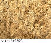 Купить «Истоптанный песок - фон», фото № 94661, снято 30 сентября 2007 г. (c) Анастасия Некрасова / Фотобанк Лори