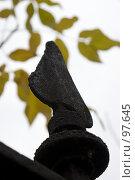 Купить «Осенний натюрморт», фото № 97645, снято 13 октября 2007 г. (c) Михаил Браво / Фотобанк Лори