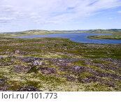 Купить «Озеро в тундре», фото № 101773, снято 16 июля 2006 г. (c) Мирзоянц Андрей / Фотобанк Лори