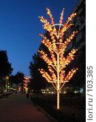 Купить «Ночной Душанбе», фото № 103385, снято 18 августа 2018 г. (c) Автунич Алексей / Фотобанк Лори