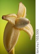 Купить «Мокрый банан», фото № 103593, снято 14 ноября 2018 г. (c) Иван Сазыкин / Фотобанк Лори