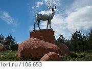 Купить «Гордый олень», фото № 106653, снято 21 июля 2007 г. (c) Чумилин Леонид Александрович / Фотобанк Лори