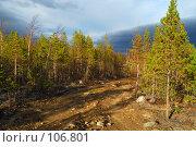 Купить «Каменистая дорога», фото № 106801, снято 3 октября 2007 г. (c) Валерий Александрович / Фотобанк Лори