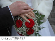 Купить «Руки молодоженов», фото № 109497, снято 20 октября 2007 г. (c) Максим Яковлев / Фотобанк Лори