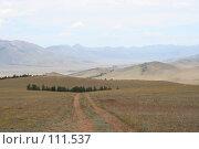 Купить «Тува: Дорога», фото № 111537, снято 29 июля 2006 г. (c) Александр Гершензон / Фотобанк Лори