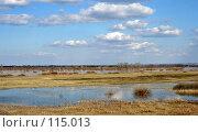 Купить «Весенний разлив», фото № 115013, снято 20 августа 2018 г. (c) Т.Кожевникова / Фотобанк Лори