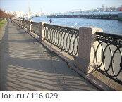 Купить «Решетка ограды на набережной», фото № 116029, снято 30 октября 2007 г. (c) Сергей Тундра / Фотобанк Лори