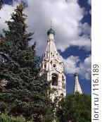 Купить «Церковь Ильи Пророка в Ярославле», фото № 116189, снято 23 июля 2007 г. (c) Юрий Назаров / Фотобанк Лори