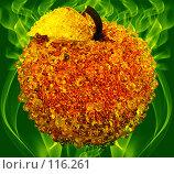 Купить «Хрустальная симфония», иллюстрация № 116261 (c) Анатолий Теребенин / Фотобанк Лори