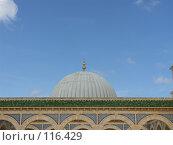Купить «Купол мавзолея.г.Монастир.Тунис», фото № 116429, снято 21 сентября 2007 г. (c) Колчева Ольга / Фотобанк Лори