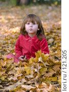 Купить «Ребенок в кленовой листве», фото № 121205, снято 1 октября 2007 г. (c) Ольга Сапегина / Фотобанк Лори