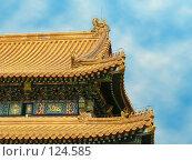 Купить «Китай. Пекин. Запретный город. Крыша императорского дворца», фото № 124585, снято 14 декабря 2017 г. (c) Вера Тропынина / Фотобанк Лори
