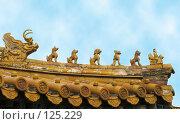Купить «Китай. Пекин. Запретный город. Крыша императорского дворца», фото № 125229, снято 14 декабря 2017 г. (c) Вера Тропынина / Фотобанк Лори