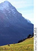Купить «Альпы. Швейцария.», фото № 128853, снято 29 сентября 2006 г. (c) Николай Коржов / Фотобанк Лори