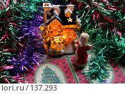 Купить «В ожидании праздника», фото № 137293, снято 4 декабря 2007 г. (c) Parmenov Pavel / Фотобанк Лори