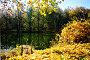 Пруд осенью, эксклюзивное фото № 139121, снято 8 марта 2017 г. (c) Наталья Волкова / Фотобанк Лори