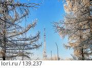 Купить «Омск,телевышка--вид из зимнего парка», фото № 139237, снято 5 декабря 2007 г. (c) Круглов Олег / Фотобанк Лори