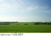 Купить «Поле и стога», фото № 139897, снято 22 июня 2007 г. (c) Дмитрий Ощепков / Фотобанк Лори