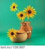 Купить «Ваза и корзина с желтыми цветами», фото № 139997, снято 12 июля 2007 г. (c) Елена Блохина / Фотобанк Лори